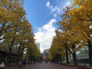 20181102道庁.jpg
